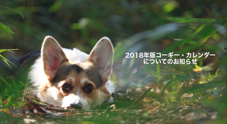 blog18_02_750