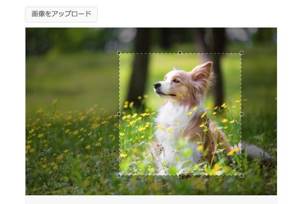 画像アップロードシステム