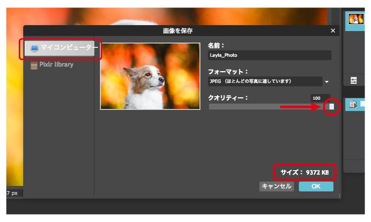 pixlr_editer-03